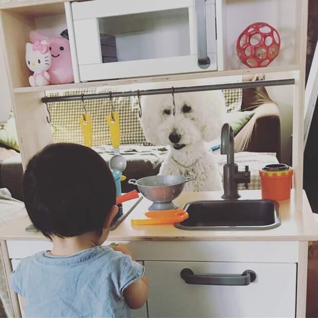 Дружба этих двоих показывает, что каждому ребенку нужен меньший друг