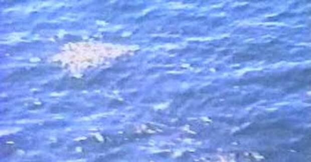 Нескольких погибших пассажиров Ту-154 нашли в спасательных жилетах