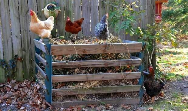 Фото: © 3.bp.blogspot.com