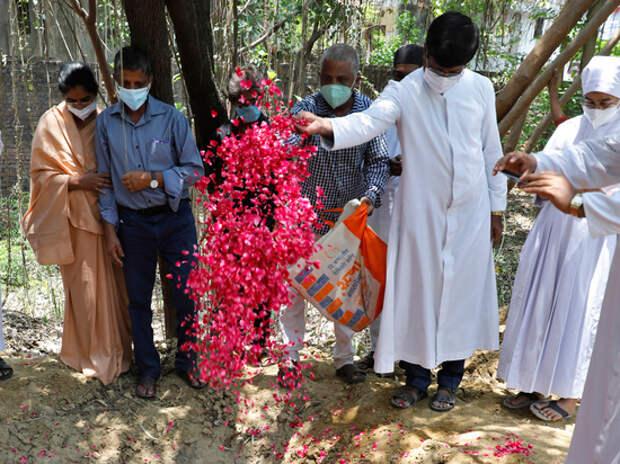 Плывущие по реке трупы в Индии признали жертвами коронавируса