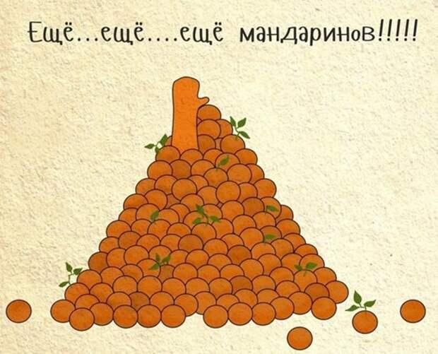 Любопытные факты о мандаринах