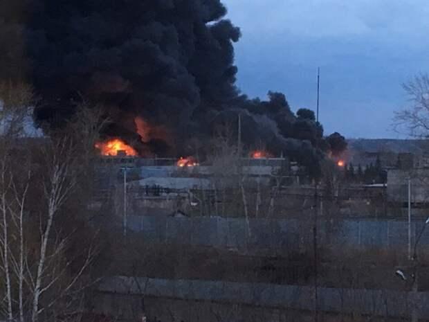 Штормовой ветер и сухостой стали причиной сразу нескольких мощнейших пожаров в Волгограде