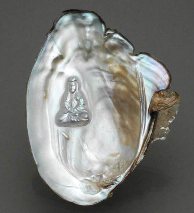 Рис. 3. Блистерный жемчуг, полученный путем помещения фигурки Будды в раковину моллюска Hyriopsis