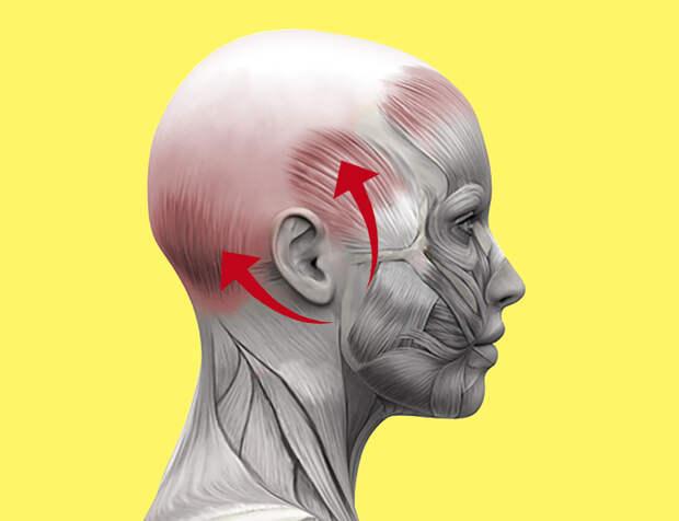 Массаж головы от морщин и выпадения волос
