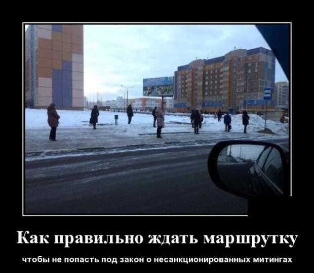 Демотиватор о митингах