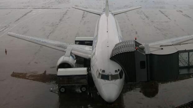 Пьяный пассажир устроил дебош всамолете при перелете изМосквы вРостов-на-Дону