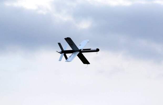 «Летать не умеет, но визга много»: Украина провела испытания дрона-камикадзе «Тихий гром»
