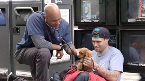 Доктор Айболит из Калифорнии бесплатно лечит животных бездомных людей