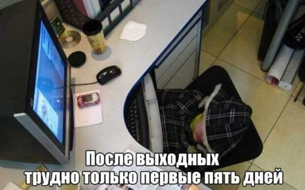 Фотоприколы про работу после длинных выходных