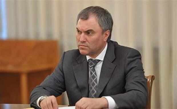 Председатель Госдумы назвал Навального пешкой в чужой большой игре