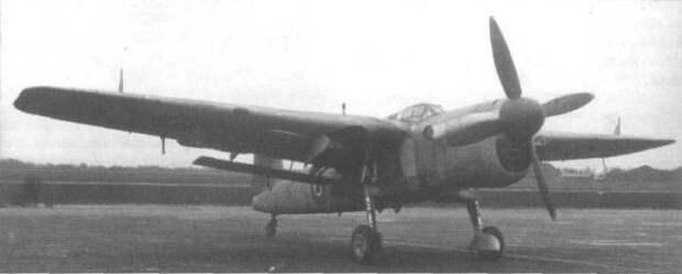 barracuda-2.jpg