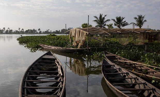 Рыбак из Индии заметил, что в пруд попала сточная вода и появились водоросли. Тогда он запустил рыбу