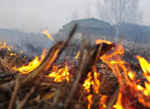 Спасатели предупредили жителей Ставрополья о чрезвычайной пожароопасности