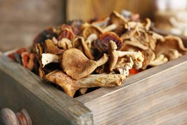 Как хранить сушеные грибы? - Блог MAMED.ua