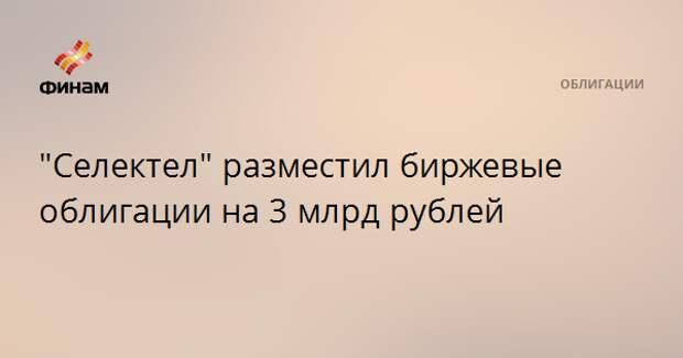 """""""Селектел"""" разместил биржевые облигации на 3 млрд рублей"""