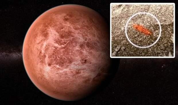 Советский аппарат «Венера-13» мог заснять жизнь на Венере