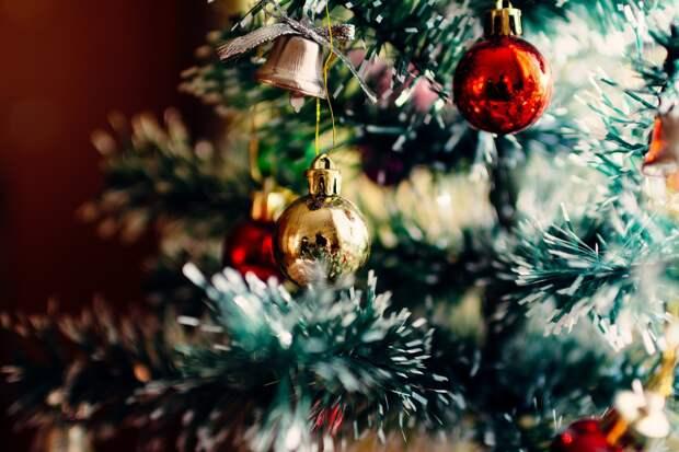 Минкурортов РК: «Ограничения мероприятий в новогодние праздники оправданы»