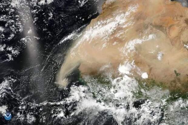 Огромное пылевое облако из Сахары может обрушиться на США