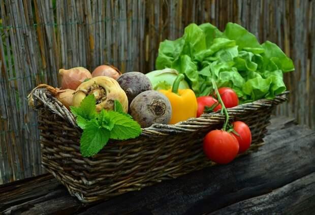 Овощи, Корзина, Овощная Корзина, Урожай, Продукты