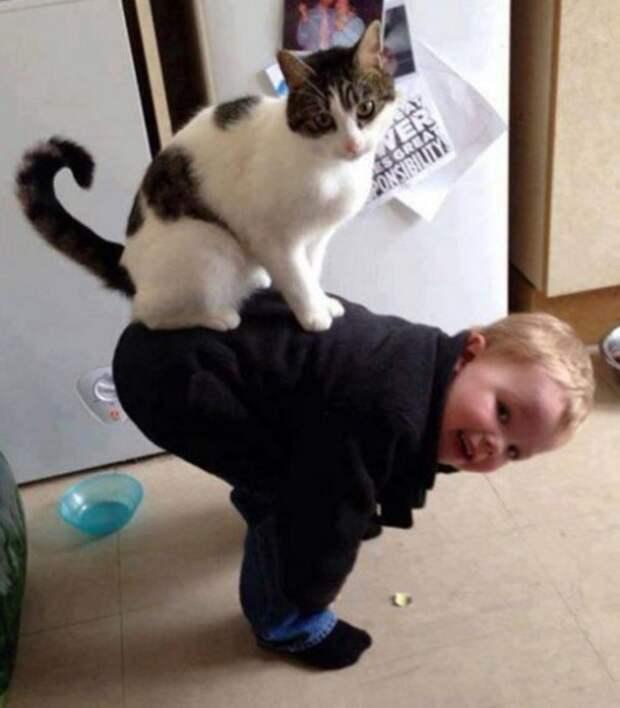 Малыши и кошки (10 фото)