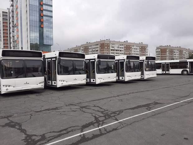 Новые автобусы в Ижевске получат фирменную окраску