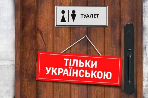 Поддержавший Майдан миллионер требует права на русский язык