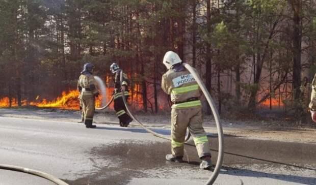 Для тушения пожара около Андреевского озера был запущен встречный пал