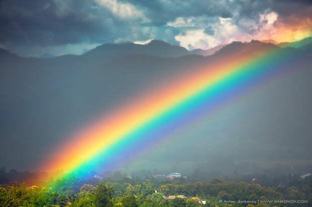 Сорок дней с исторической победы ЛГБТК+-движения над нашей страной