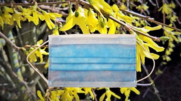 Врачи раскрыли простой способ борьбы с аллергией на тополиный пух