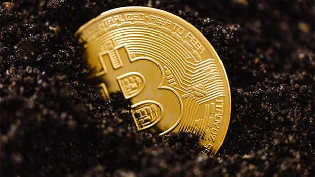Эксперт рассказал о способах покупки биткоина за тысячу долларов