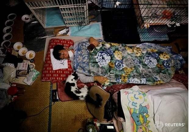Как живет мужчина, который не оставил японский Чернобыль из-за животных