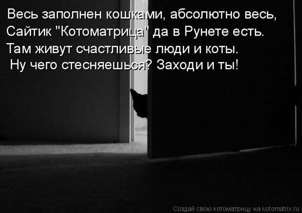 """Котоматрица: Весь заполнен кошками, абсолютно весь, Сайтик """"Котоматрица"""" да в Рунете есть. Там живут счастливые люди и коты. Ну чего стесняешься? Заходи и"""