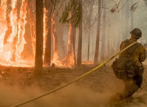 Американские власти нашли виновника самого страшного пожара в Калифорнии