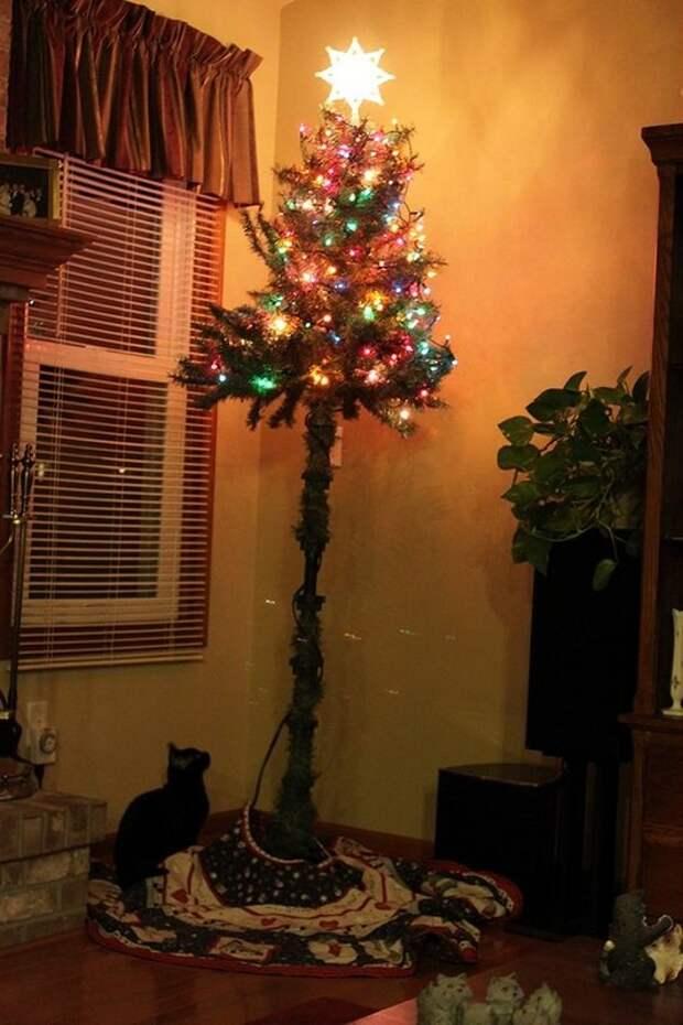 50 гениальных идей, как защитить елку от озорных питомцев