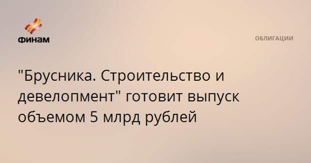 """""""Брусника. Строительство и девелопмент"""" готовит выпуск объемом 5 млрд рублей"""