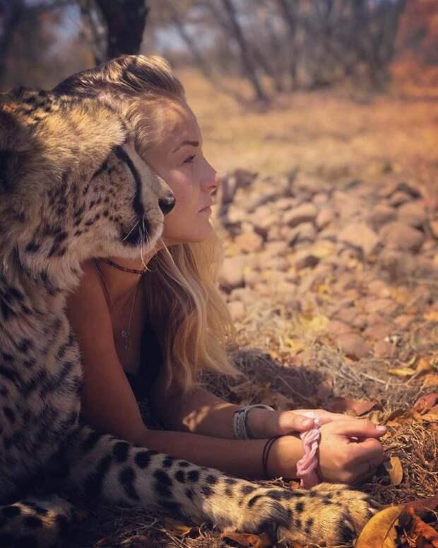 В объятьях гепардов: эта девушка живет в дикой природе и считает хищников друзьями