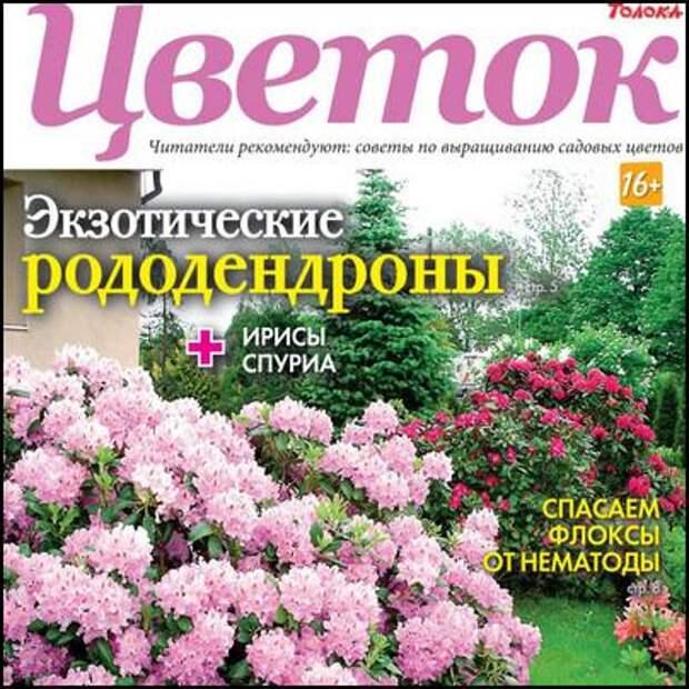 Цветок №9,май 2021