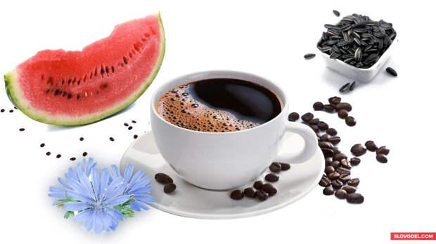 Кофе без кофе: есть ли будущее у напитка из шелухи подсолнечника и семян арбуза