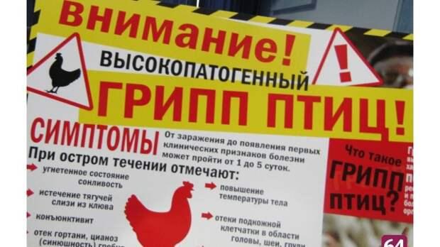 Госкомветеринарии Крыма информирует об опубликовании новых ветеринарных правил, предусматривающие проведение мероприятий по профилактике и ликвидации высокопатогенного гриппа птиц