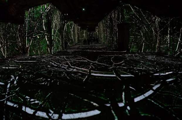 Карьер Огней: мультимедийный музей в провансальской каменоломне