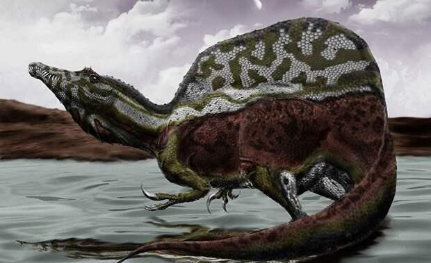 В Марокко обнаружены останки динозавра-амфибии