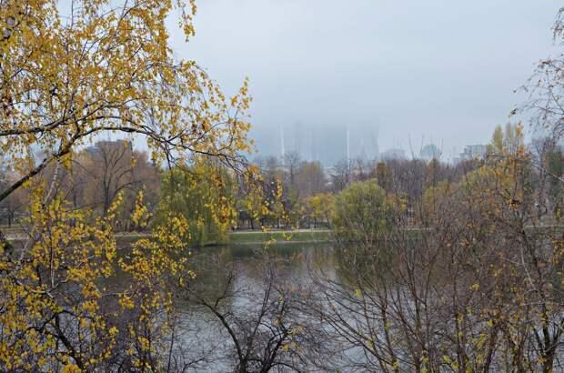 «Желтый» уровень опасности объявили в столице до утра 18 сентября из-за тумана
