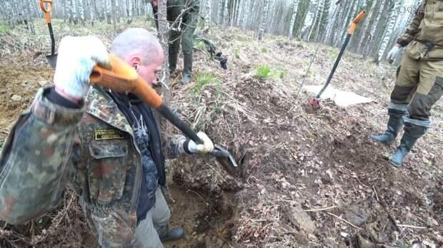 Поисковики рассказали о массовом захоронении времен ВОВ под Новгородом
