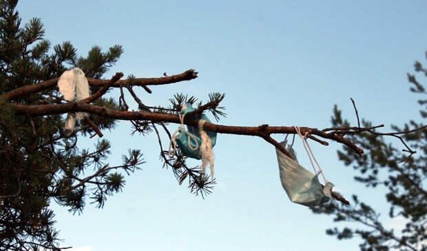 Управление по туризму высказалось об «убитой» горе Сампо в Карелии