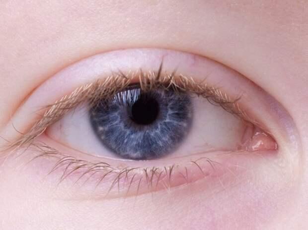 Офтальмолог развеял миф о восстановлении зрения с помощью черники