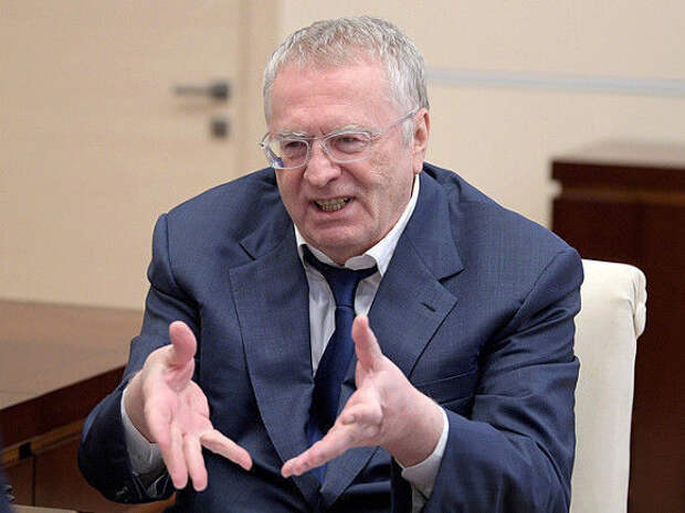 Жириновский вступился за устрашающий памятник Алёнке