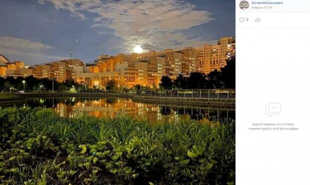 Фото дня: летний вечер на Ходынке