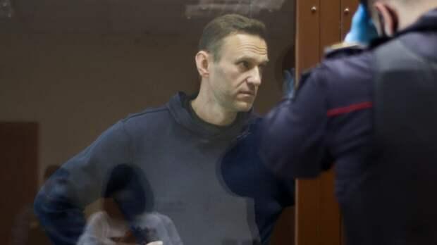 Западные правозащитники попытались притянуть Навального к повестке Дня Победы