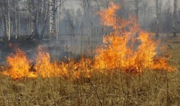 В21 территории Оренбуржья прогнозируют 5 класс пожарной опасности