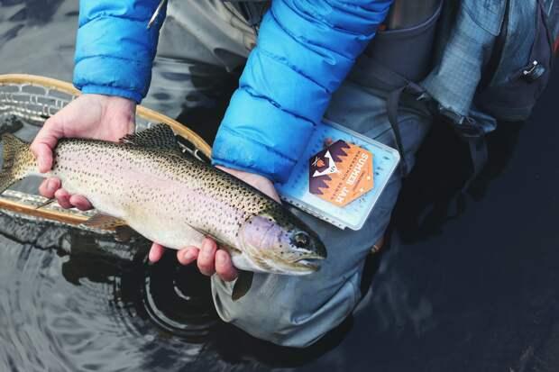 У браконьеров из Удмуртии хотят отсудить ущерб за ловлю рыбы